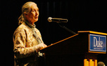 Primatologist Jane Goodall spoke Monday in Page Auditorium, discussing the digitization of more than 400,000 of her documents on chimpanzees and the need to preserve their habitats.