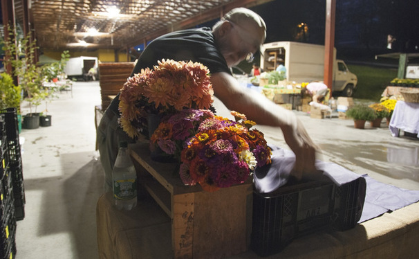 Vendors arrive at the Durham Central Park market before sunrise to set up their stands and arrange produce. For Helga and Tim, each Saturday morning consists of a precisely articulated set-up routine in preparation for their many customers.